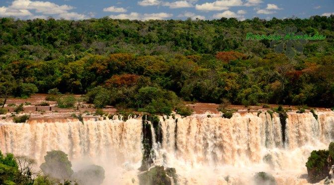 The Spring at Iguassu Falls