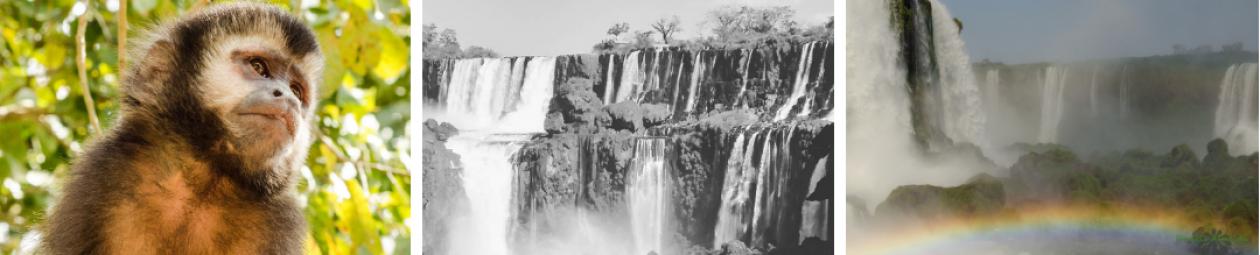 Iguassu by Francis